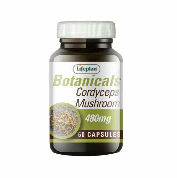 Lifeplan Cordyseps Mushroom 480mg - 60 caps